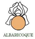 abricot-es.jpg