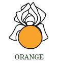 orange-de.jpg